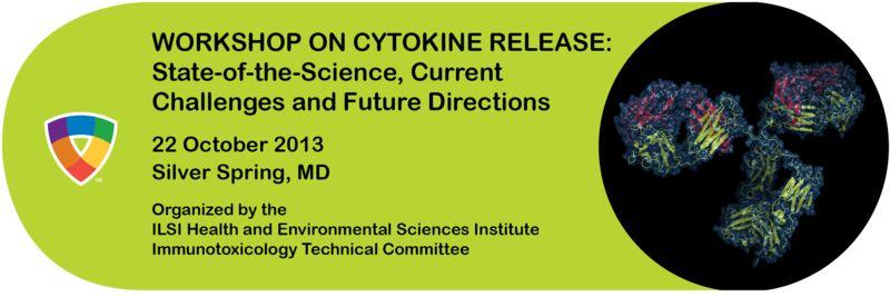 2013 CRA workshop banner final_800x267
